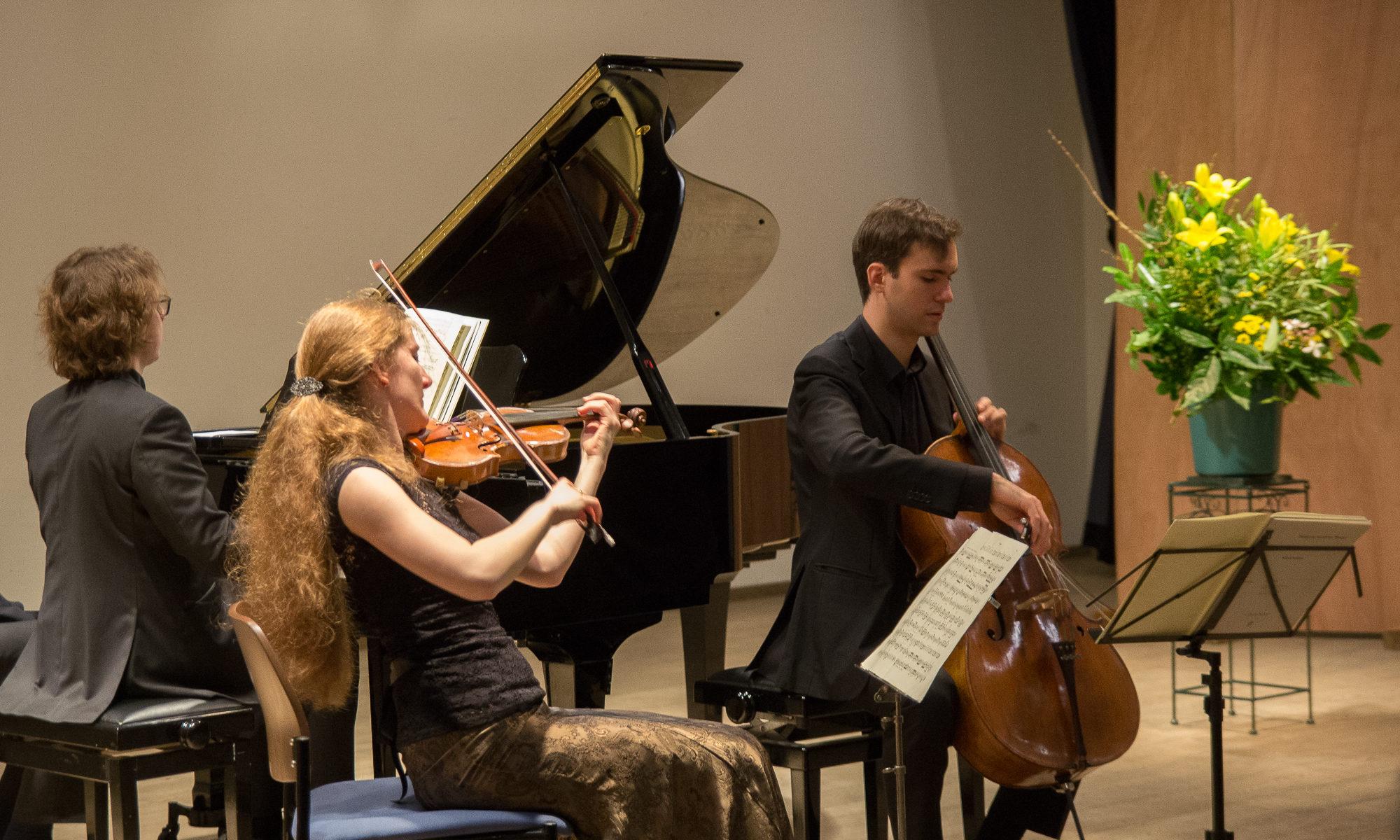 Stichting Concertleven Westvoorne